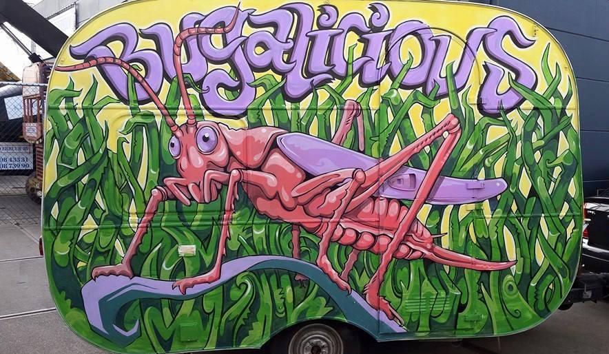 Bugalicious caravan-2